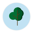 regras de candidatura para eventos científicos podem incluir ações ambientais