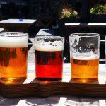 Destino Cervejeiro, o novo produto turístico de Santa Catarina